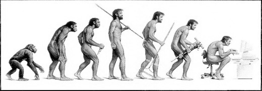 Evolução de um programador